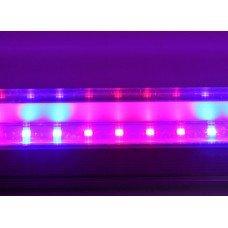 Светодиодный светильник 0,6м  8 Вт (4 красных 2 синих ФИТО свет)