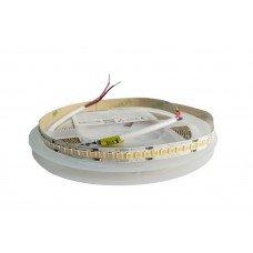 LED лента теплая белая 28Вт 24V 3000К (240) RD00Q0TC-A-T CRI90, 2255Lm WW (3м уп.)  IP33 RISHANG