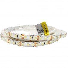 LED лента холодная белая 8,6Вт 12V 6500К (120) RN68C0TA-B, 562Lm CW (7743), герметичная IP 65 RISHANG